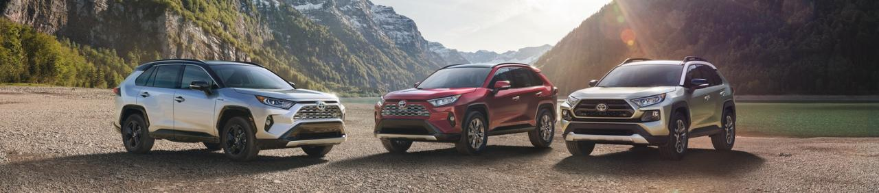 The 2019 Toyota RAV4 at OpenRoad Toyota